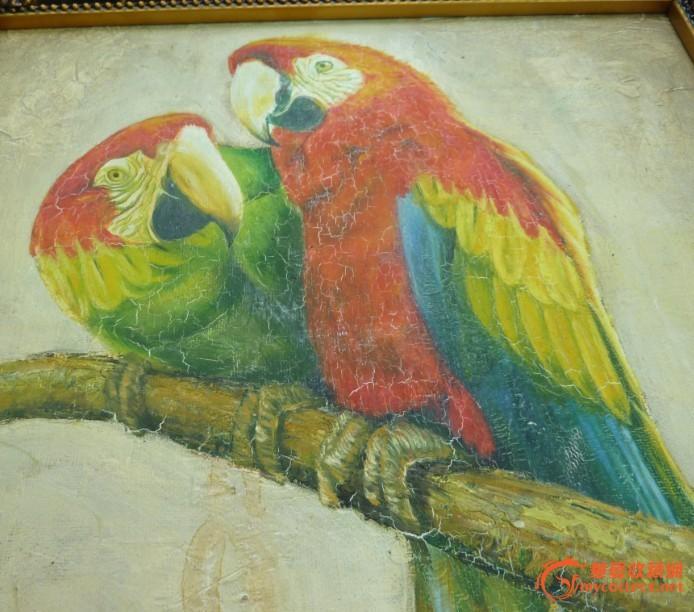 壁纸 动物 儿童画 鸟 鹦鹉 694_612