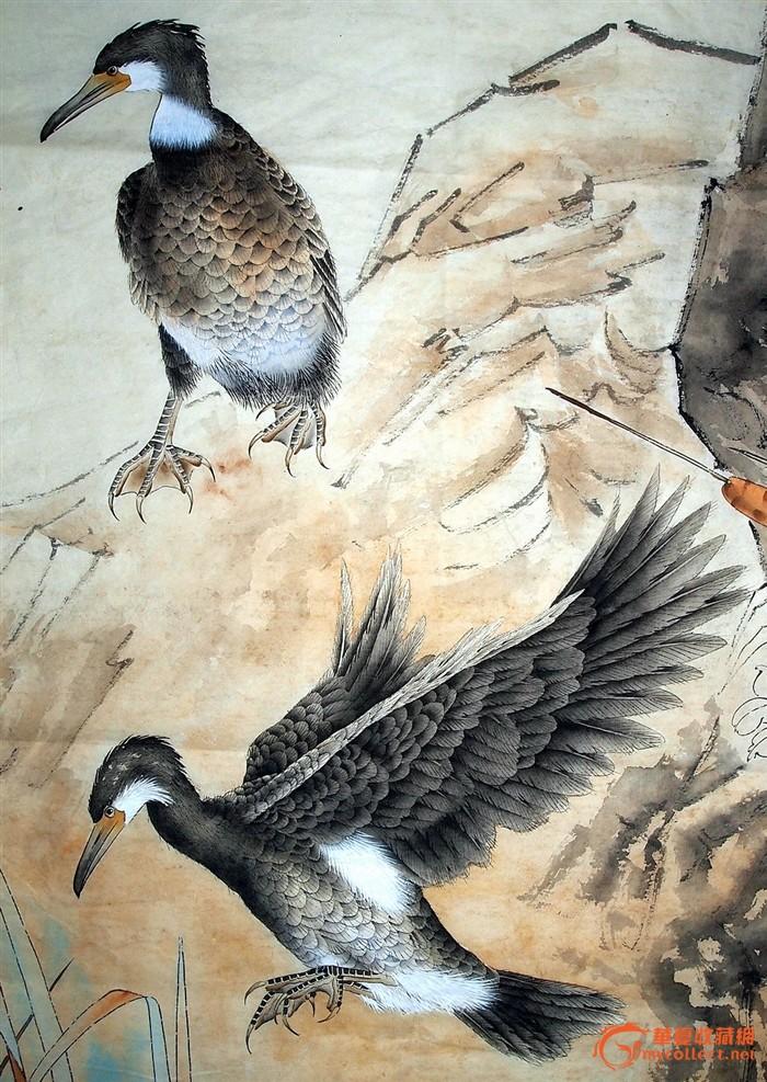 当代工笔画名家--郑雅风--花鸟