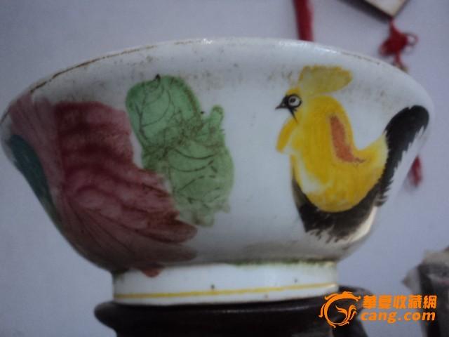 壁纸 动物 鸟 鹦鹉 640_480
