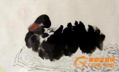花鸟国画 精品鸭子 适宜收藏