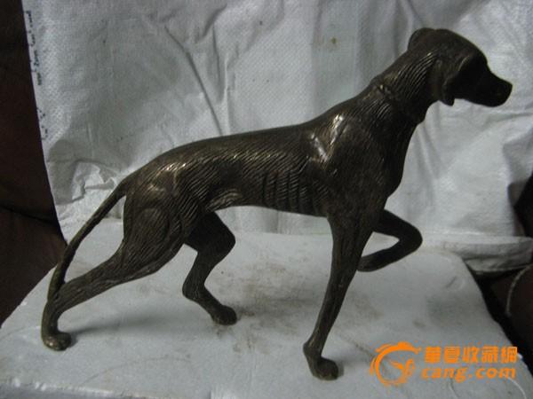 壁纸 动物 狗 狗狗 600_450