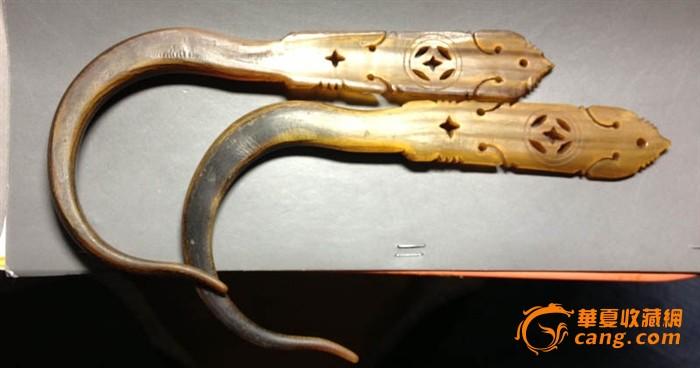 动物 蛇 700_368