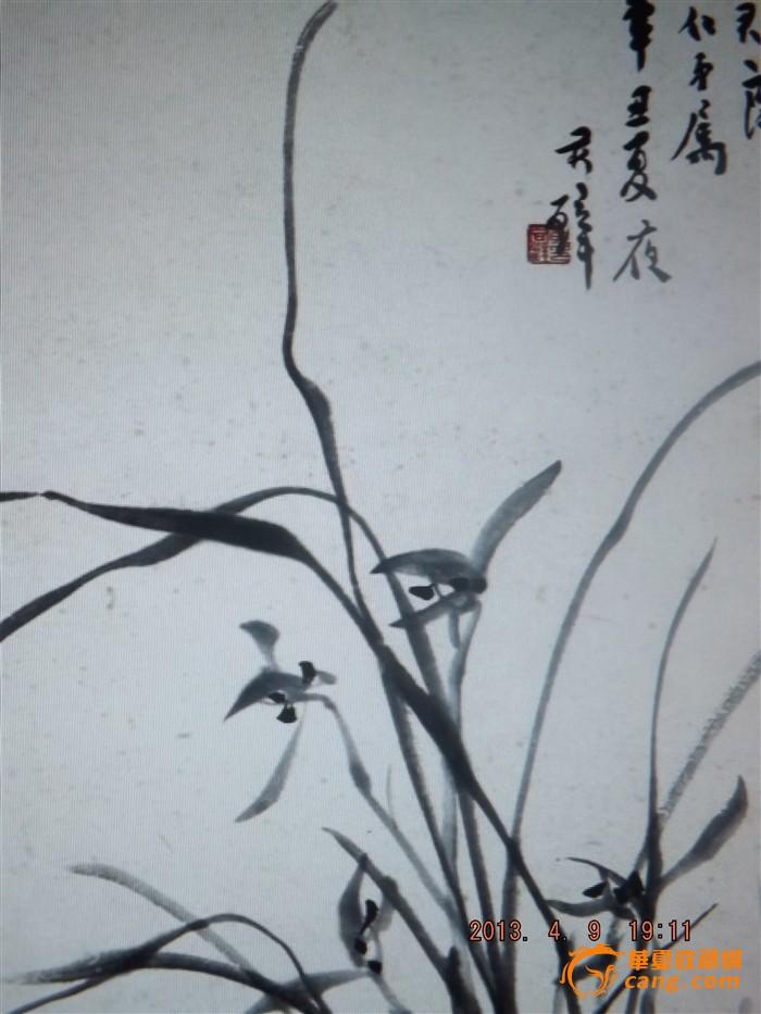 台湾兰花手绘图案