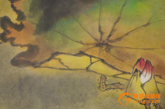 彩画金鱼手绘教程