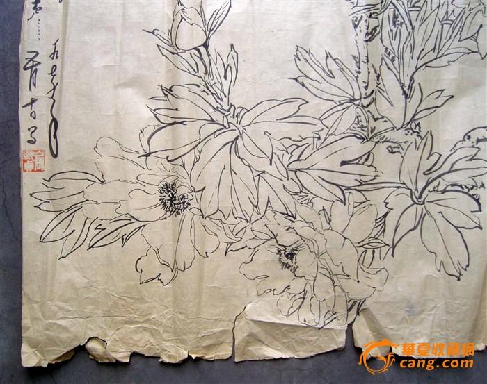俞致贞《七,八十年代绘●花卉写生画稿10幅》