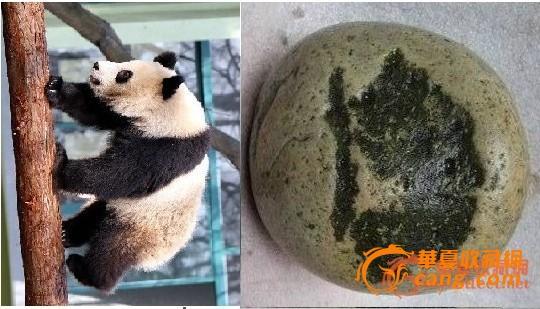 废旧杯子竹子熊猫手工制作图片