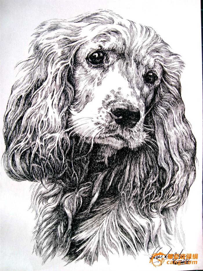 复杂动物素描画法步骤图解