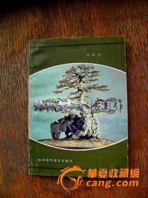 树桩盆景设计与制作