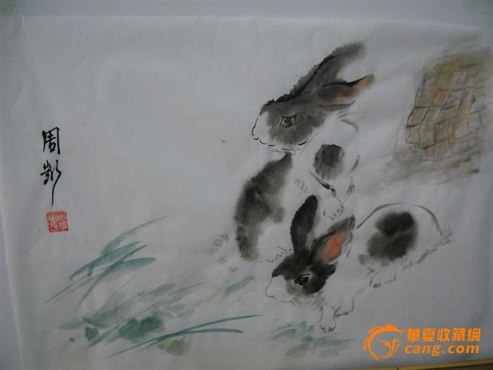 兔子_兔子价格_兔子图片