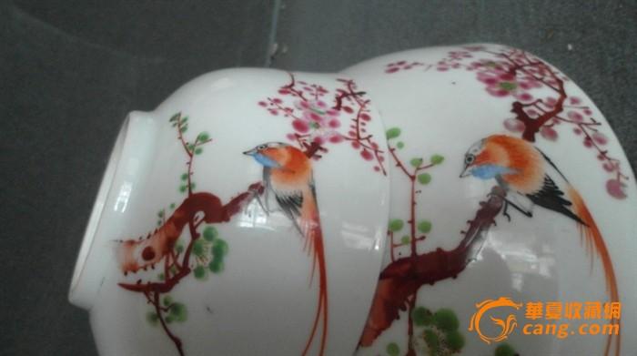 手绘梅花绶带鸟