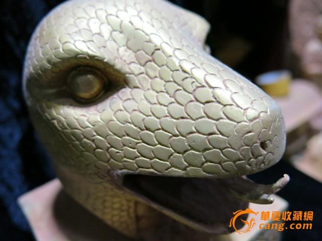 简笔画动物蛇头