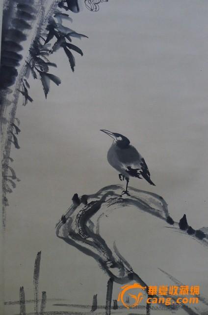 八大山人花鸟作品图片