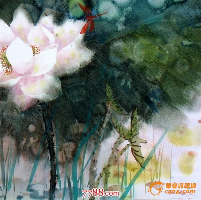 名家作品武朝利水彩画花鸟画写实 荷花蜻蜓装饰wzl032