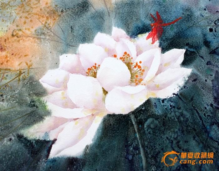 【国画 字画】名家武朝利水彩画风景画 荷花蜻蜓wzl018