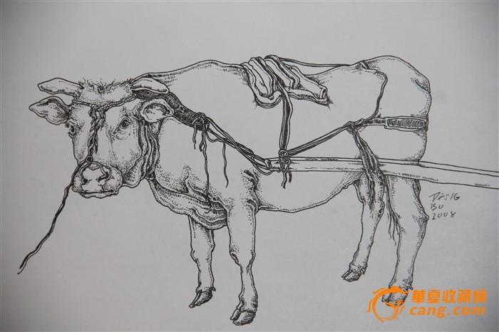 素描可爱动物分解步骤