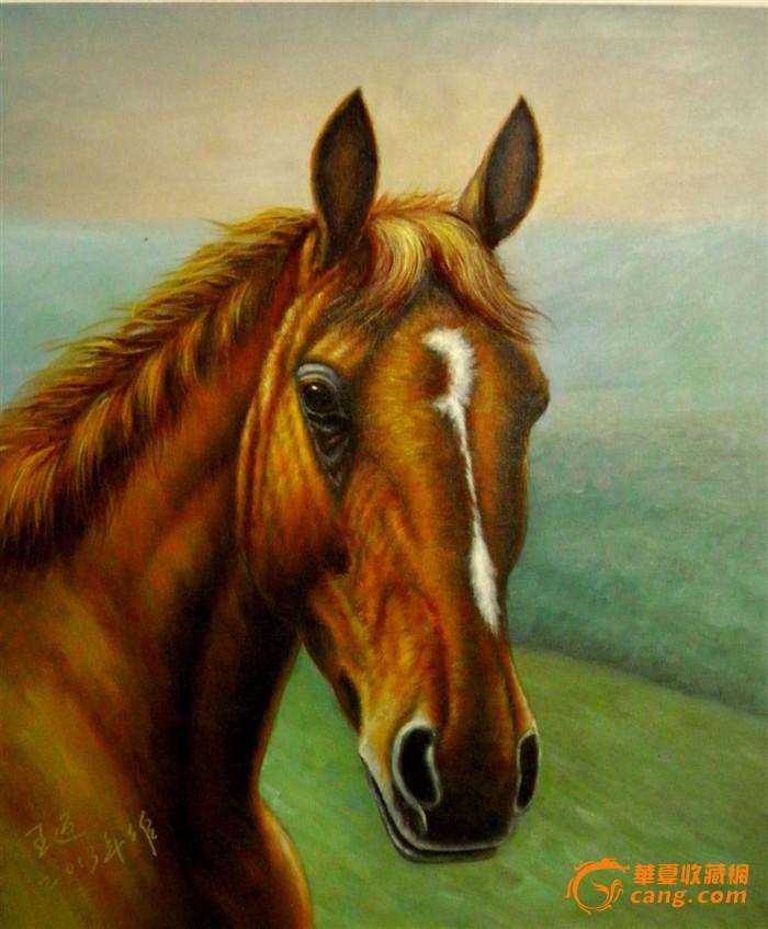 彩铅马画法步骤