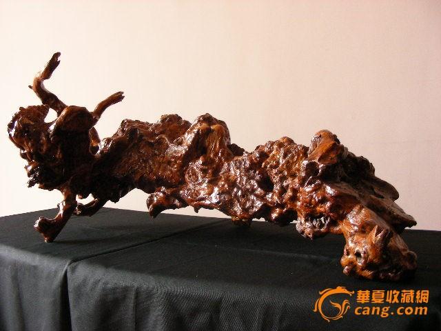 深山石缝百年树根造型艺术【东方巨龙】
