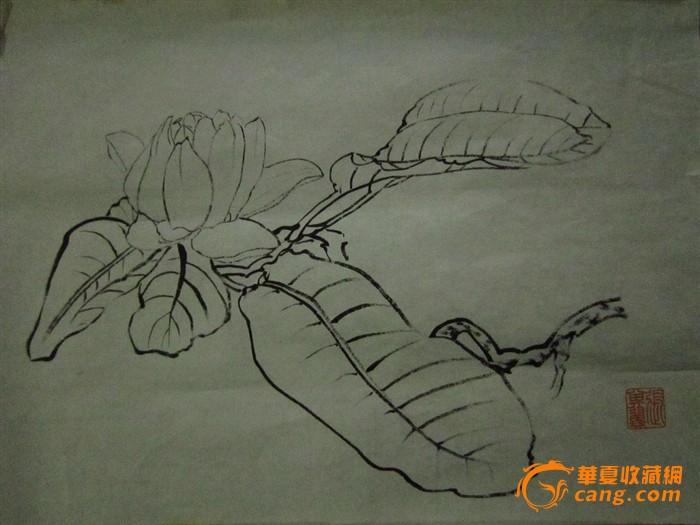 现代铅笔手绘花鸟图