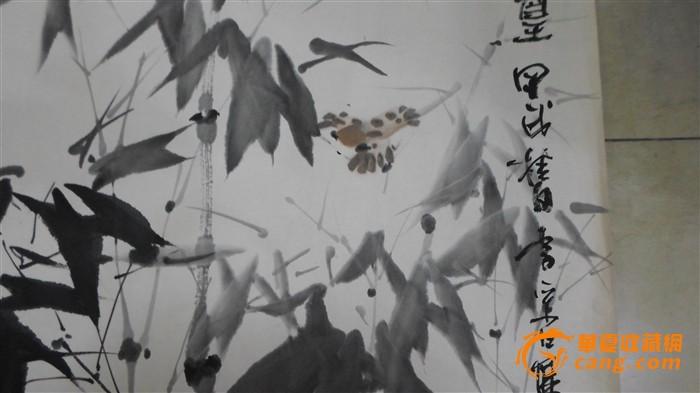 鲤鱼绘图步骤
