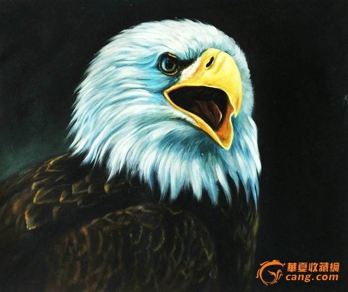 动物油画 鹰 0420
