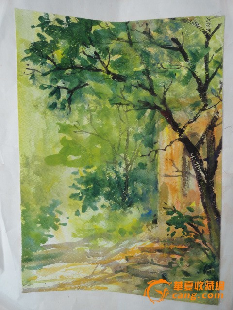 著名画家【沈绍伦】70-80年代绘画的水彩山水树木图