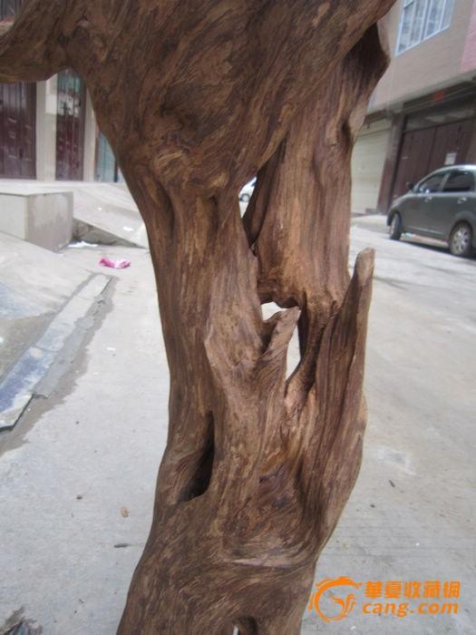 刚到越南沉香木摆件_刚到越南沉香木摆件价格_刚到木
