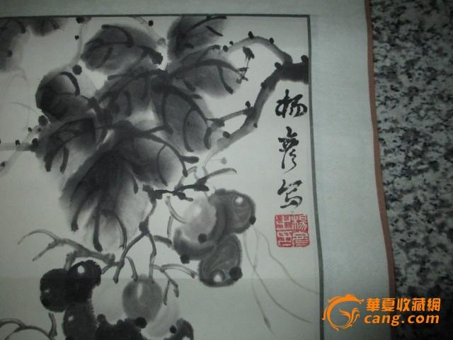 名家国画葡萄菊花