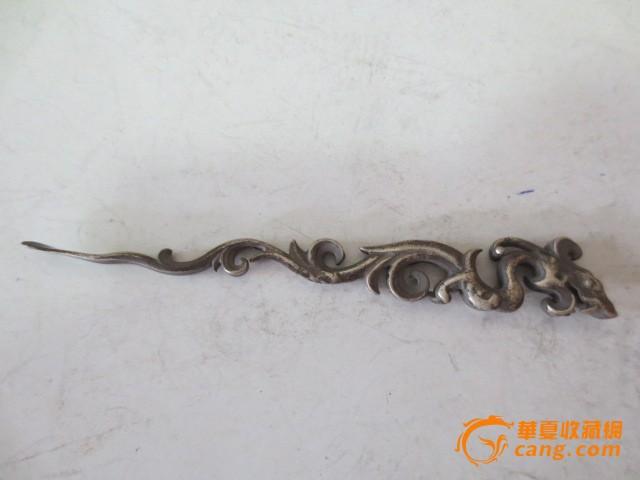 动物 蜥 蜥蜴 640