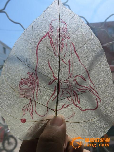 菩提树叶画