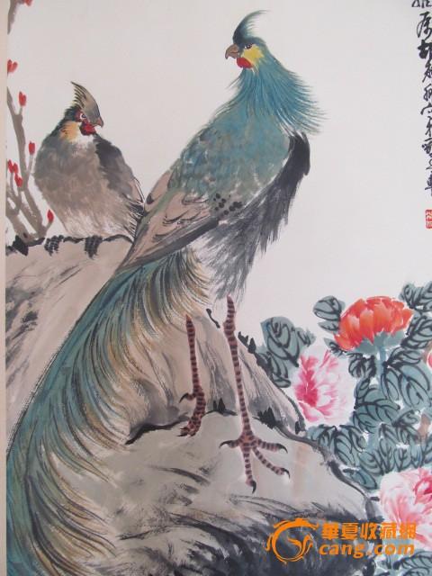 孔雀牡丹图工笔画