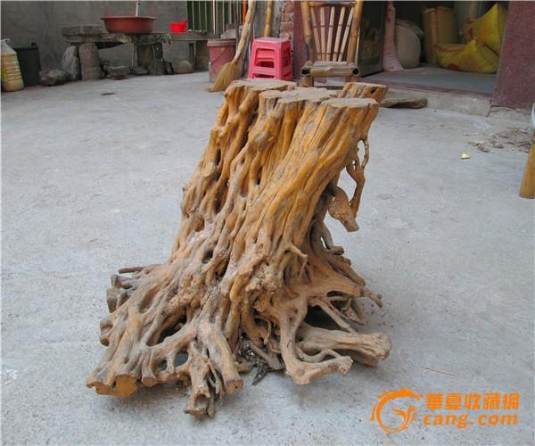 纯天然根枝花盆架