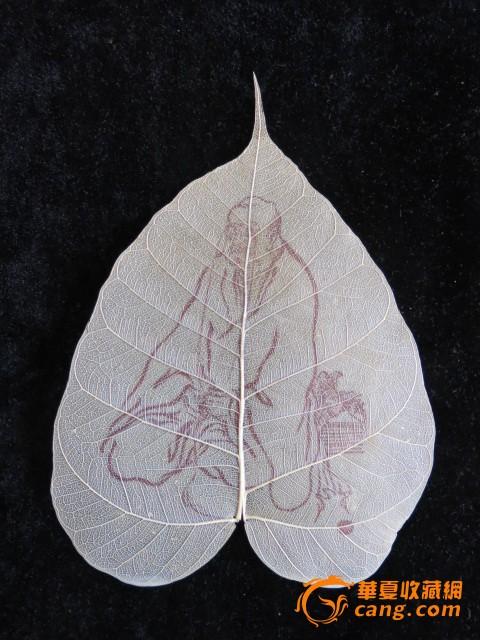 树叶也可以画画,进来瞧瞧