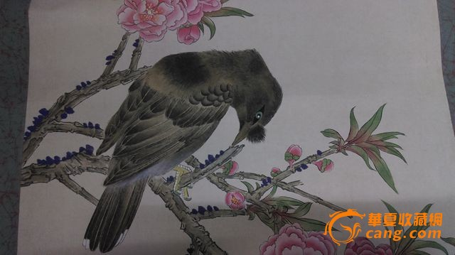 动物 国画 鸟 鸟类