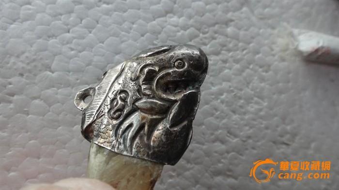 动物爪子_动物爪子价格