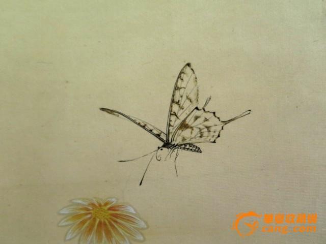 潘静淑工笔画蝴蝶一幅
