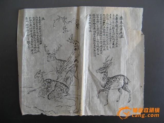 42153早期精美动物画稿11张 (连史纸)