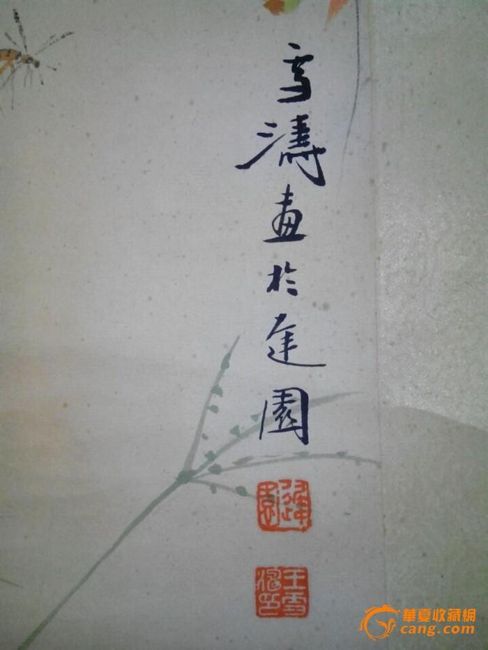 虫草图(包真)