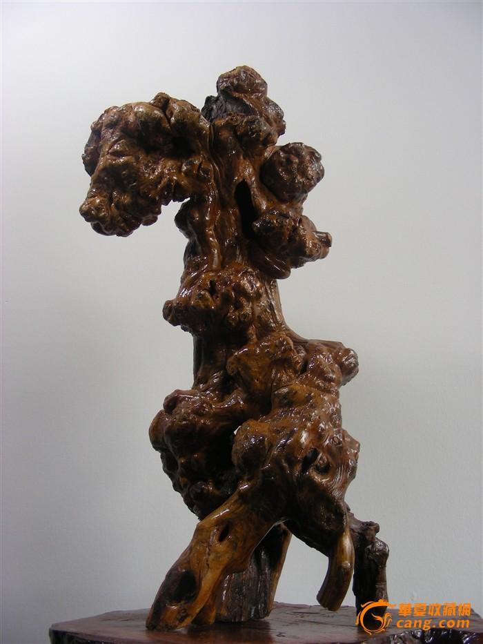 深山石缝树根造型艺术-高头大马